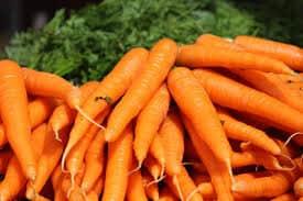 Gajar Gajar (Carrot)